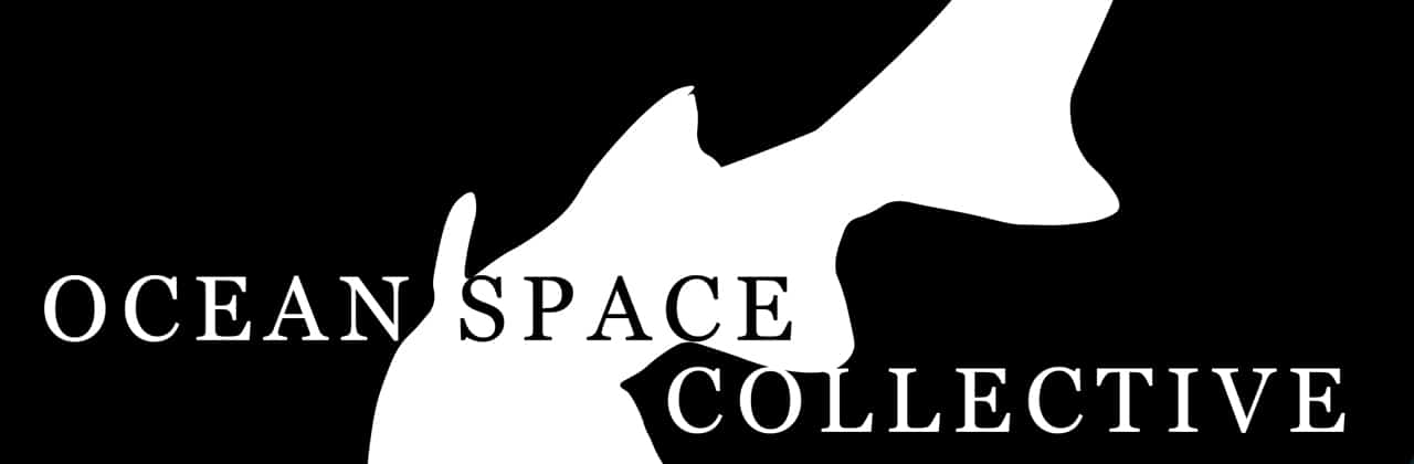 Image Ocean Space Collective